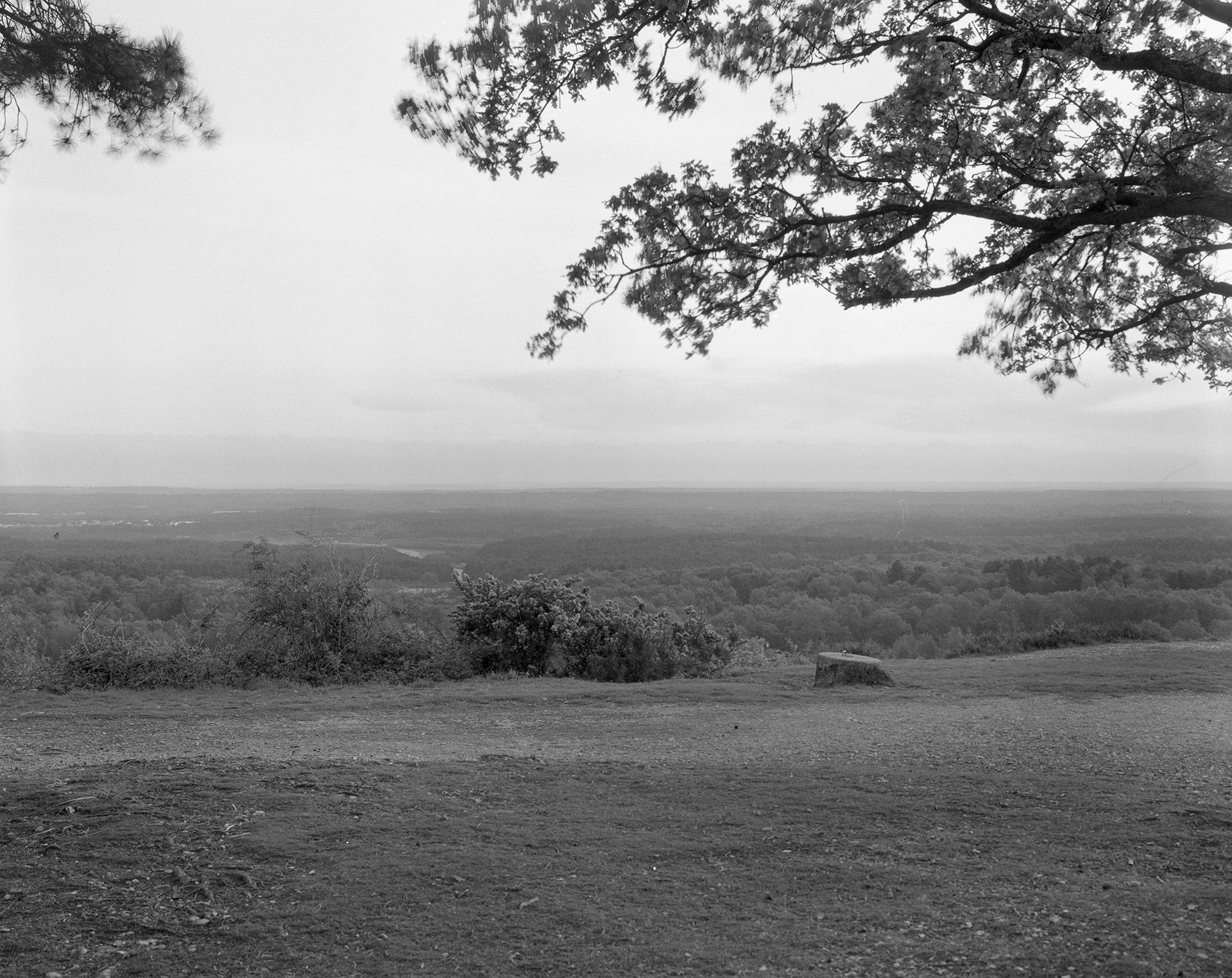 landscape_016